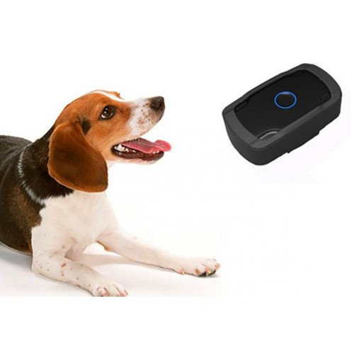 Mini GPS tracker for pets (dogs, cats...)